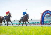 2020 The Star Gold Coast Magic Millions Raceday Photo From Magic Millions